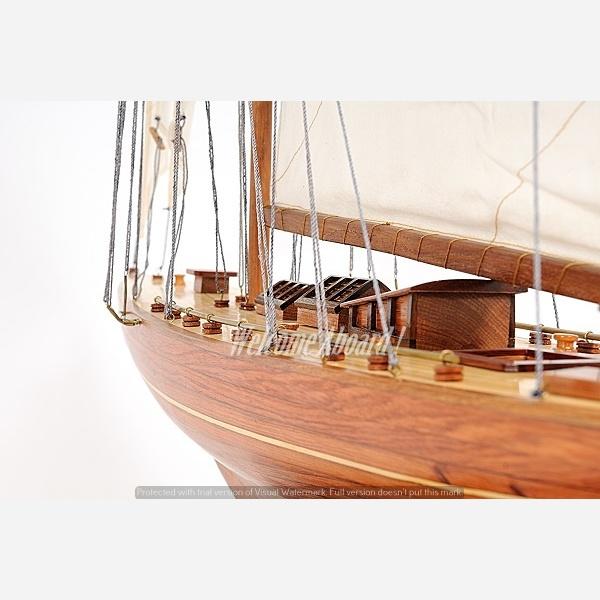 画像3: YT167 Shamrock Yacht(Large)/シャムロック(L)